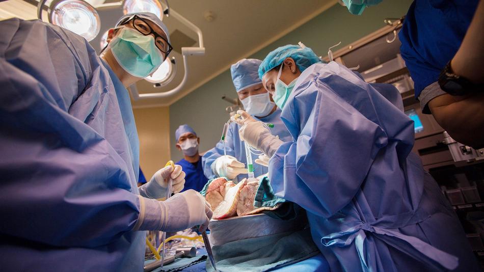 Órgãos | Novo hospital poderá ter centro de transplantes