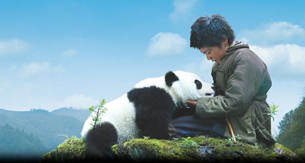 O sexo dos pandas