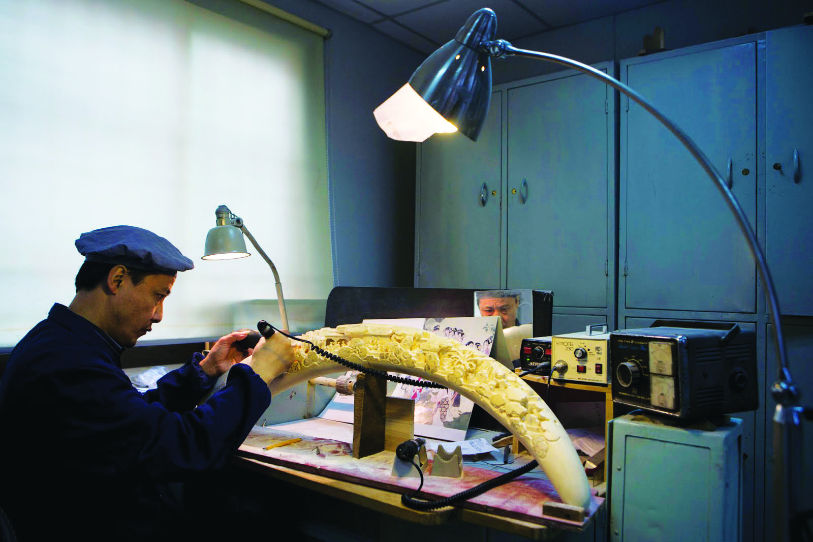 China vai acabar com comércio de marfim até final de 2017