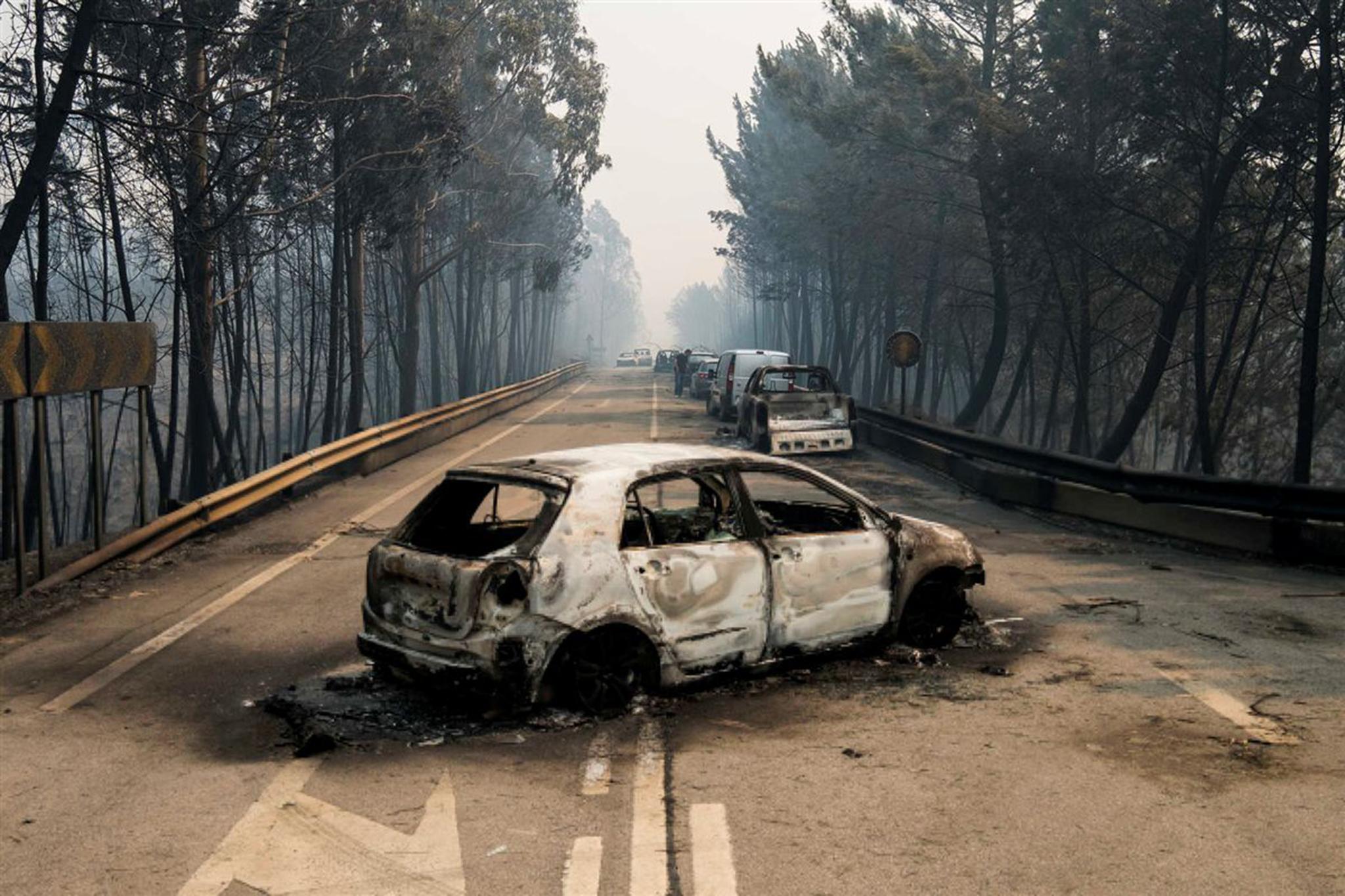 Solidariedade | Aberta conta para apoio a vítimas de incêndio em Portugal