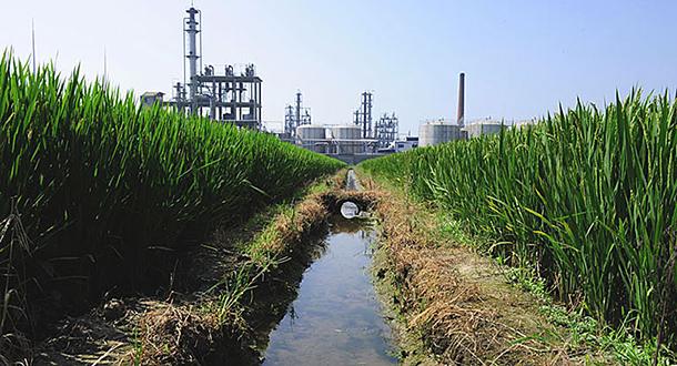 Industrialização selvagem levou à contaminação de solos e águas