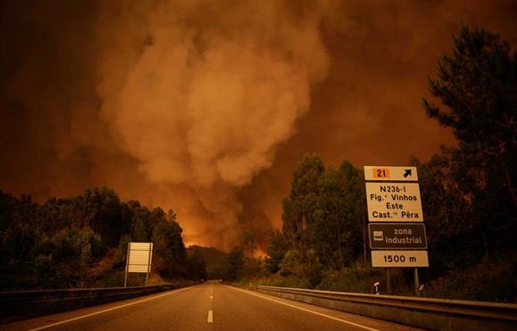 Fotógrafo de Macau participa em acção solidária sobre incêndios de Pedrógão Grande