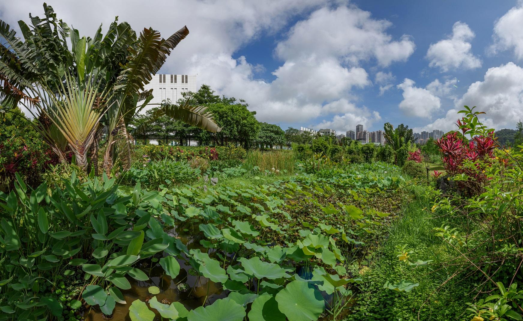 Ecoturismo | DST pondera organizar visitas de observação