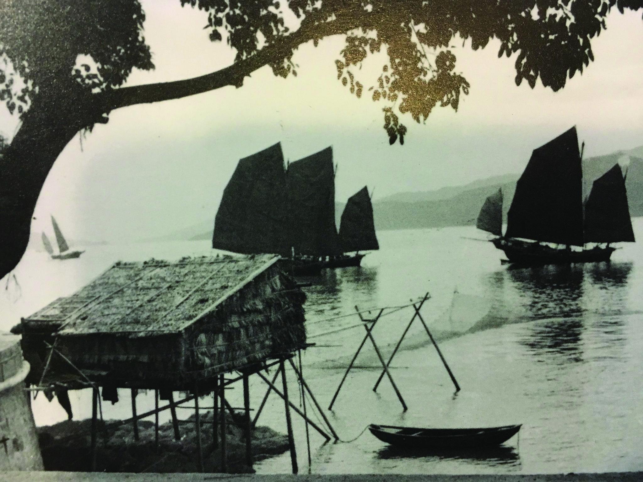 Festival | Evento pioneiro festeja oceanos