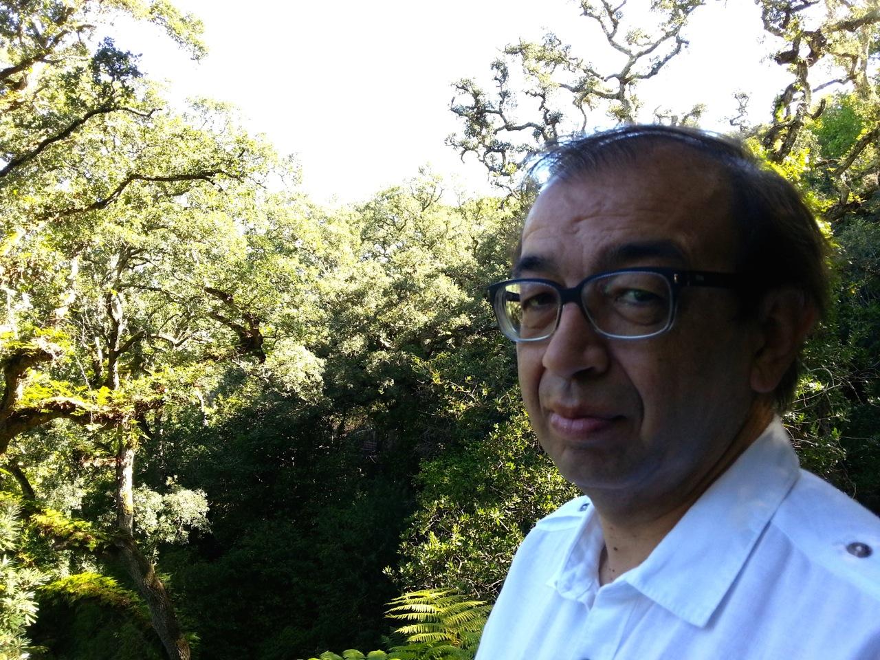 """Fernando Sobral, autor de """"O Silêncio dos Céus"""":""""A obesidade da riqueza traiu os portugueses"""""""