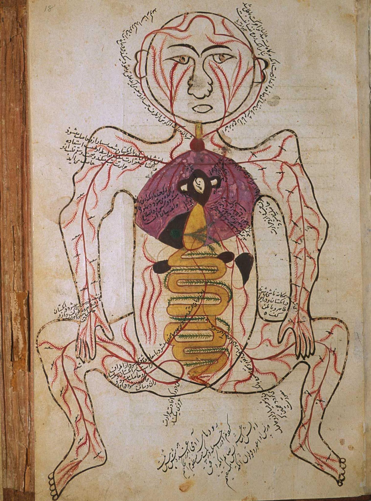 Da medicina antiga II
