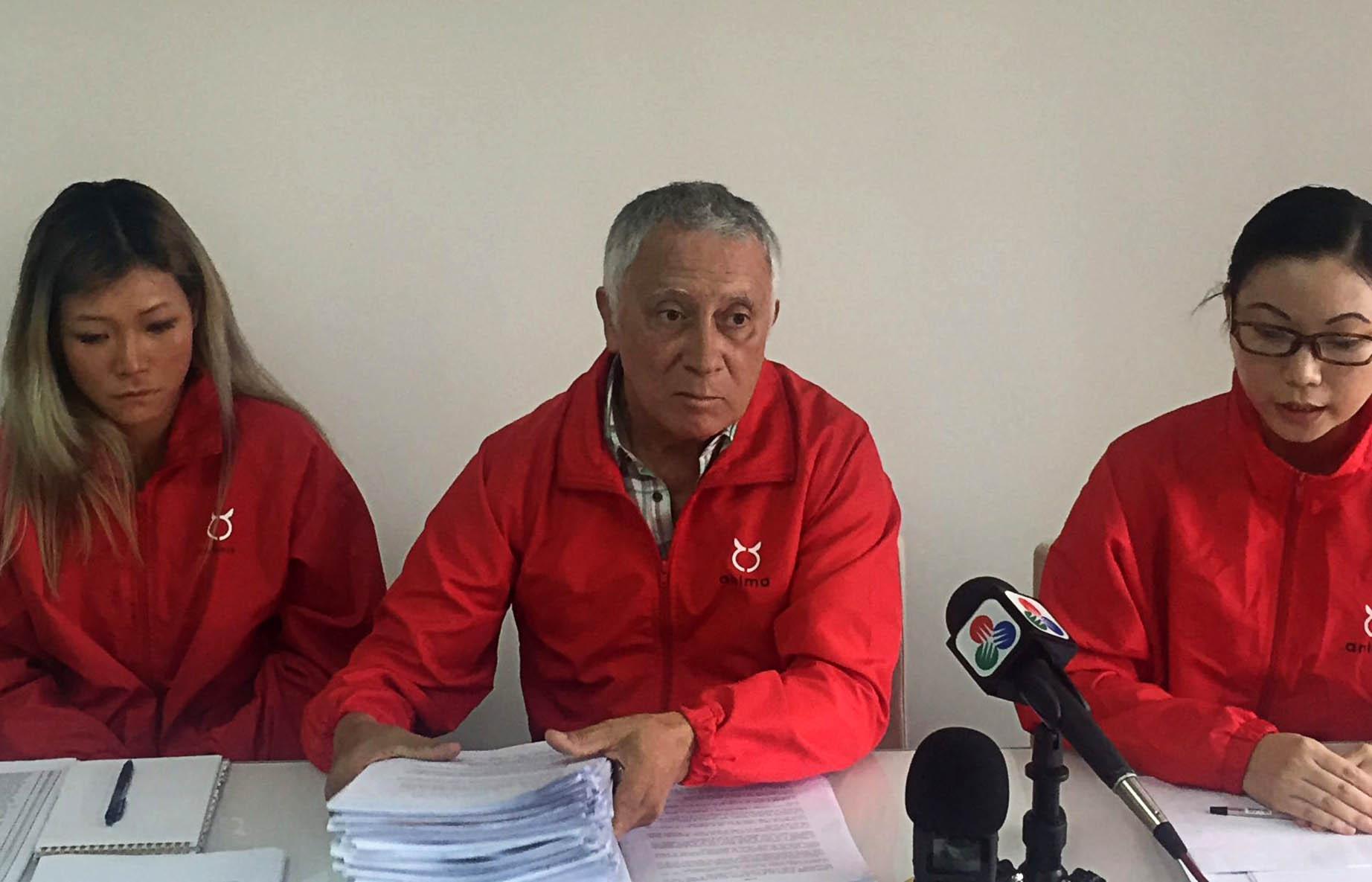 Canídromo | Anima entrega hoje ao IACM 650 pedidos de adopção dos galgos