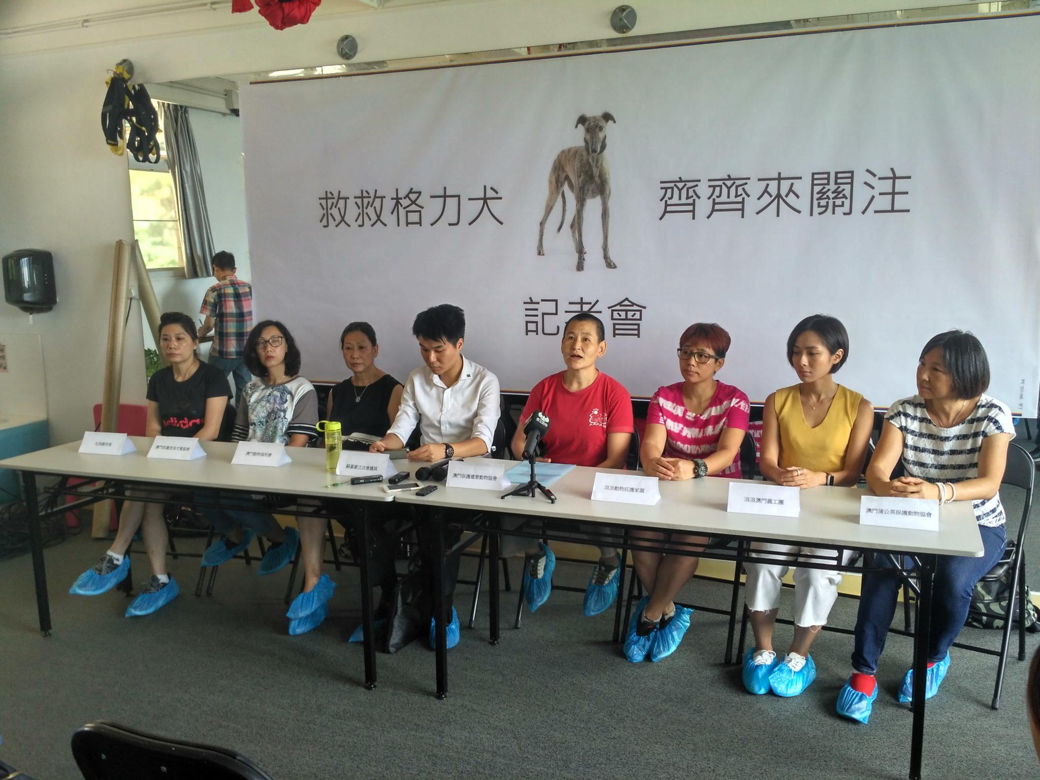 Canídromo | Oito associações contra envio de galgos para o Interior da China