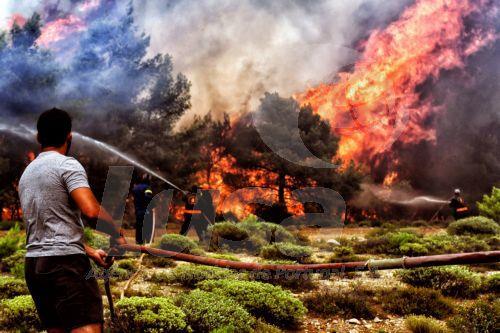 Incêndios | Número de mortos na Grécia subiu para 81 com autoridades a continuarem as buscas