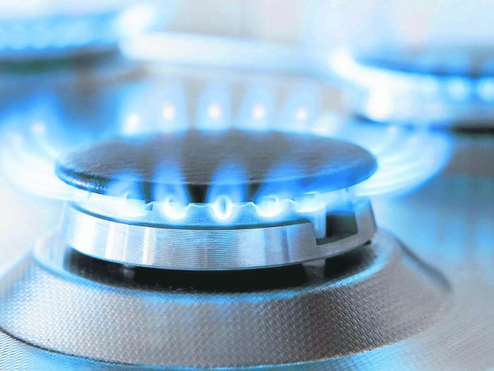 Gás natural | Sinosky diz que revisão do contrato de concessão está quase concluída