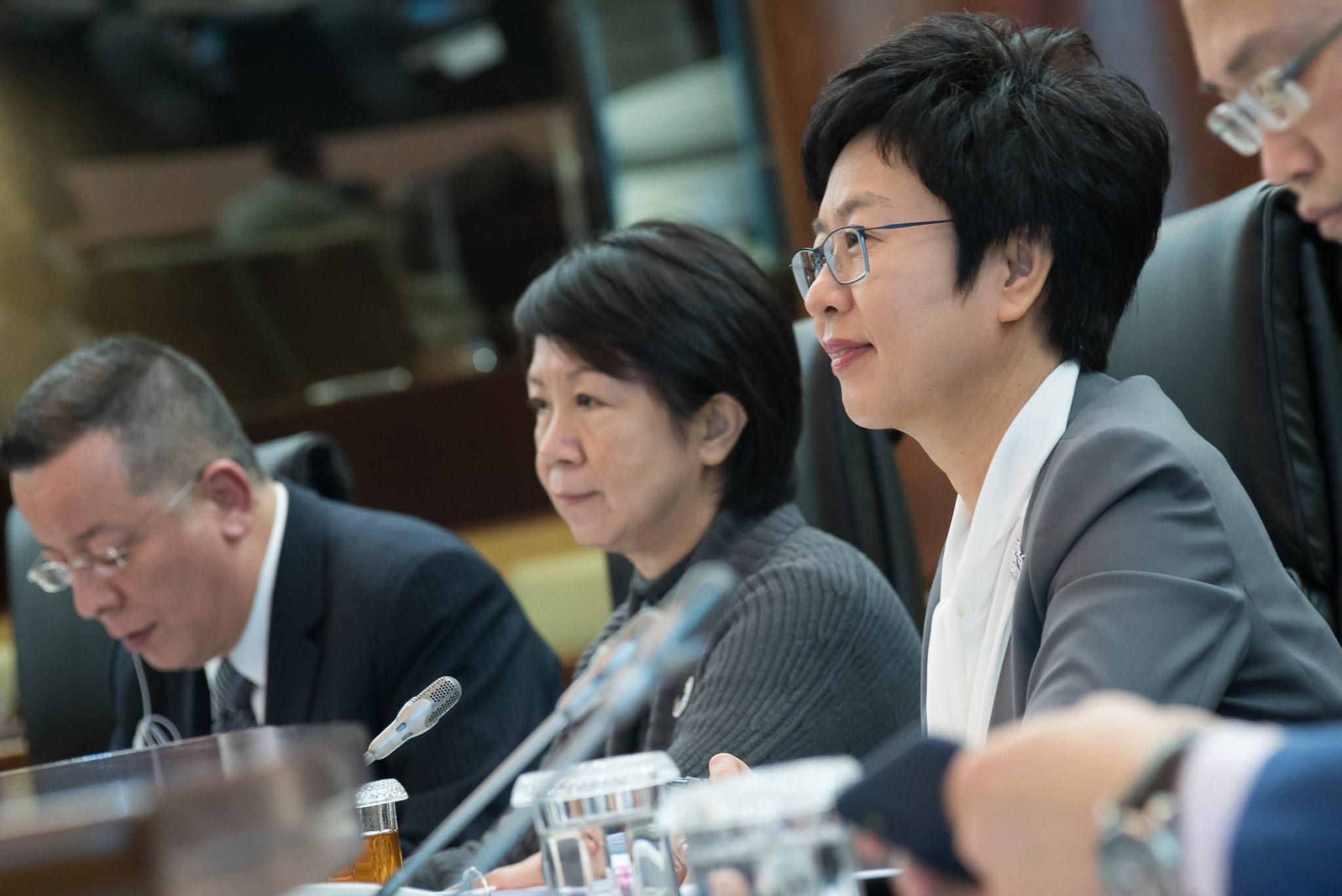 Lei Básica | Sónia Chan defende que democracia pode existir sem sufrágio universal