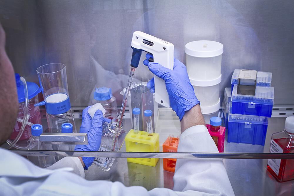 Ciência | Fundo de Desenvolvimento deu mais de 260 milhões em apoios