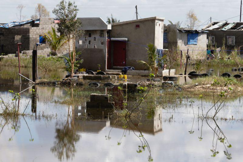 Idai: Buzi, em Moçambique, secou e renasce das cheias anunciadas por uma corrente de bois e cabritos