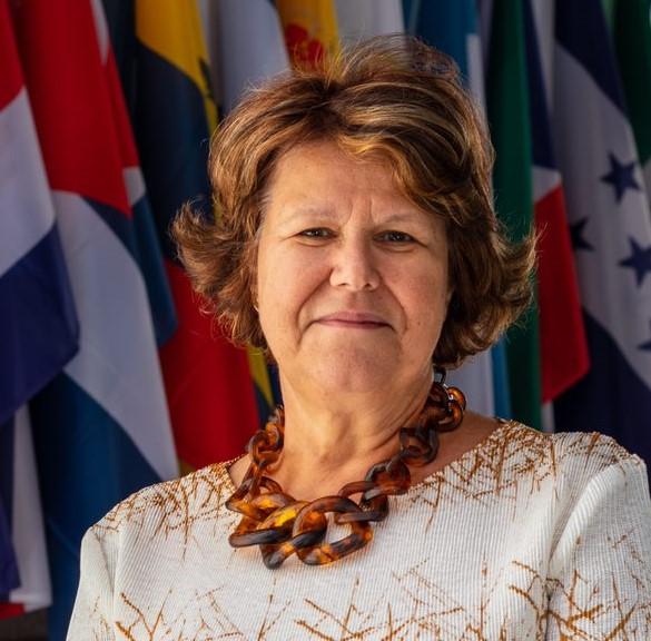 """Ana Paula Laborinho, directora em Portugal da OEI e ex-presidente do Instituto Camões: """"Não fomos a reboque da China"""""""