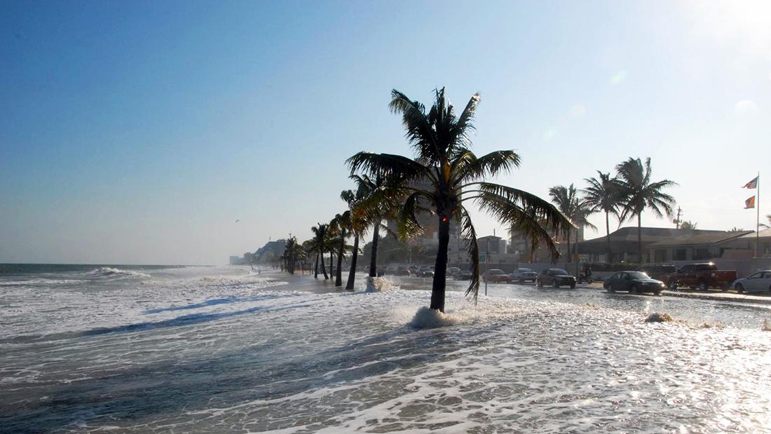 Ciência   300 milhões ameaçados por subida dos oceanos até 2050