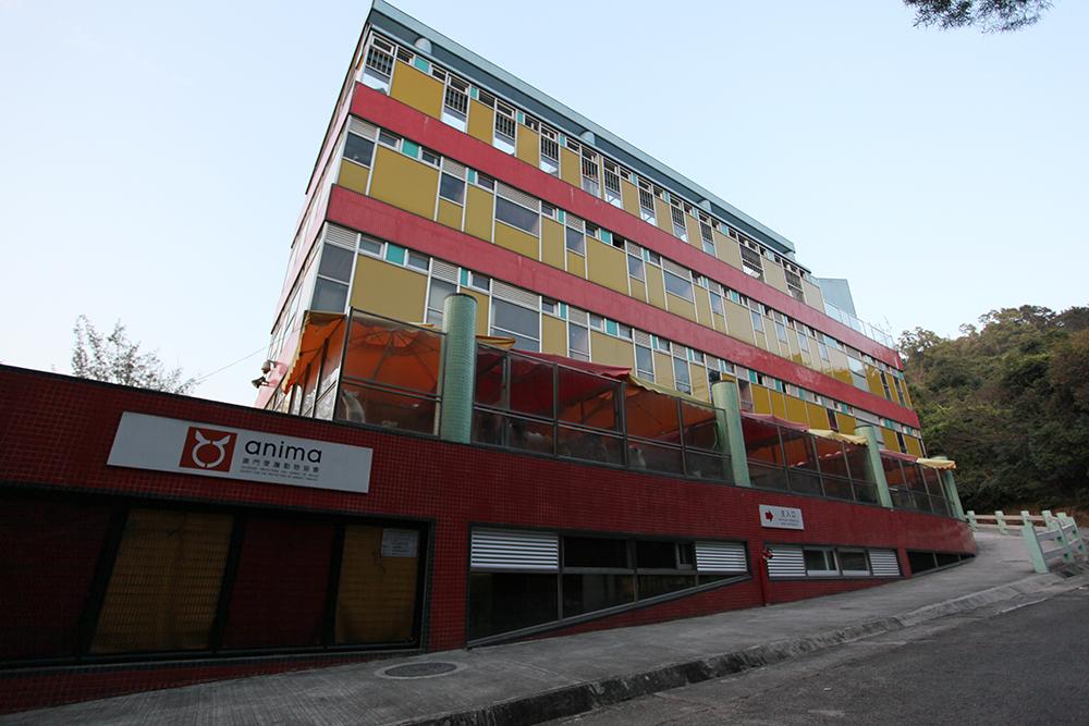 ANIMA | Associação quer apoio da Fundação Macau já este mês