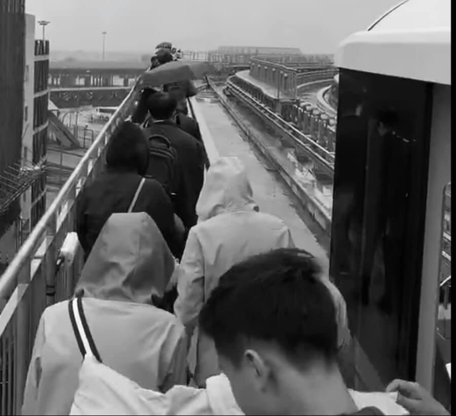 Metro Ligeiro | Sistema de transporte regista outra falha de funcionamento