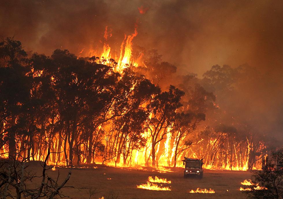 Austrália   Graves incêndios provocam mais uma morte e profundo impacto ambiental