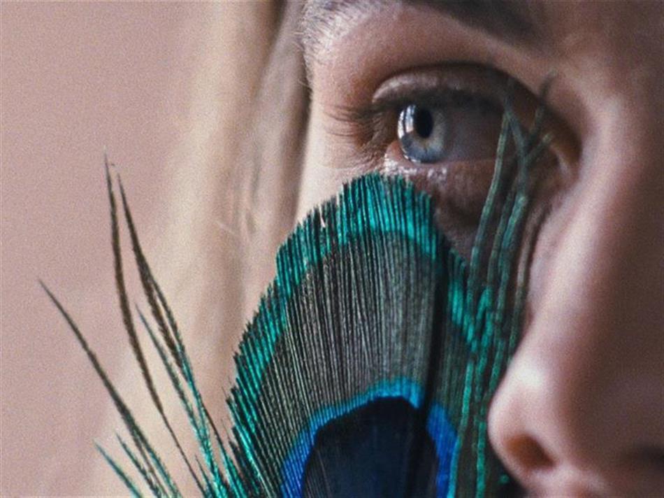 """Filme """"A metamorfose dos pássaros"""" de Catarina Vasconcelos premiado em Taiwan"""