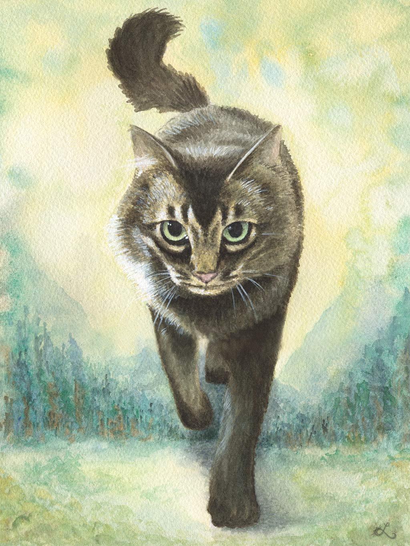 O gato desejável