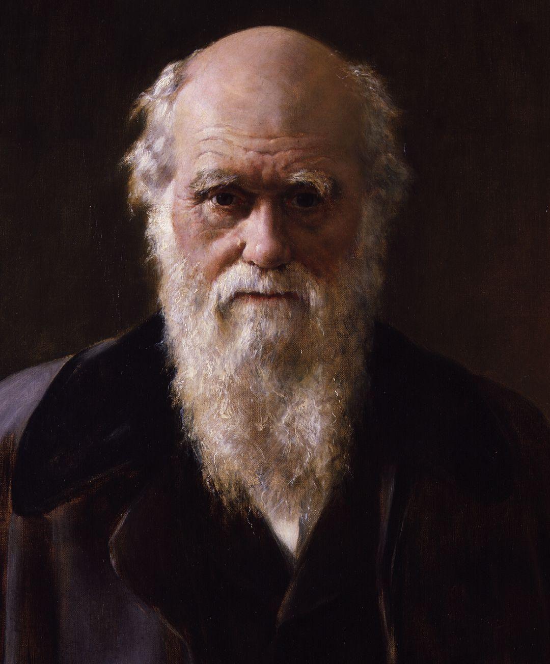 Uma questão darwiniana