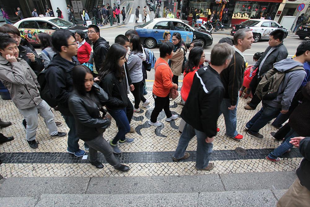 Macau perdeu população e milhares de TNR