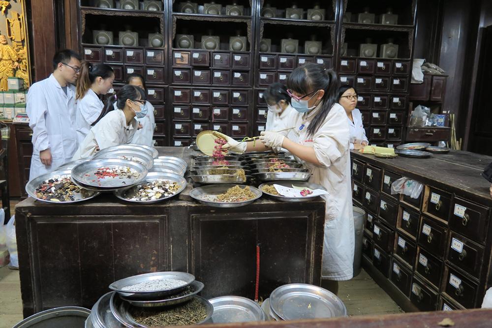 As seis vias terapêuticas da Medicina Tradicional Chinesa