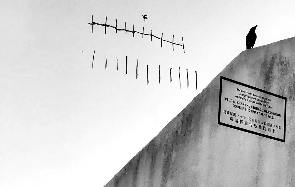 FRC | Exposição de imagens e vídeos da quarentena inaugurada amanhã