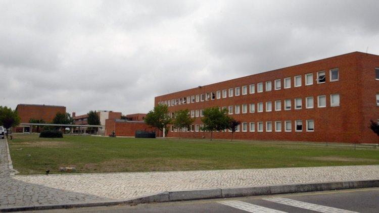 Premiados docentes do Instituto Confúcio da Universidade de Aveiro