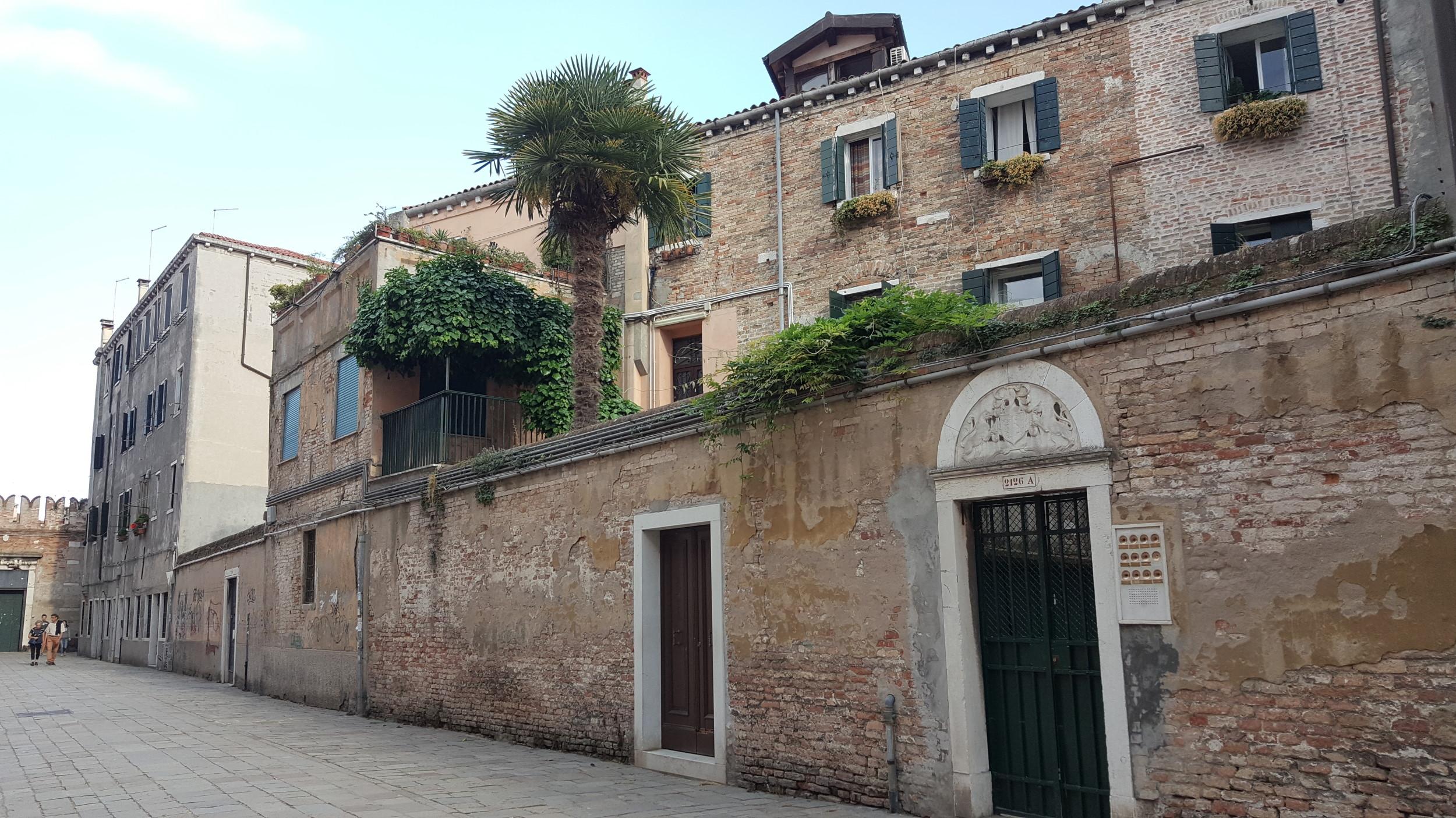 Bienal de Veneza   MAM acolhe propostas para exposição