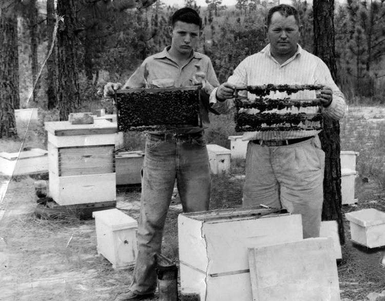 """""""A morte de um apicultor"""" 4 (Última parte)"""